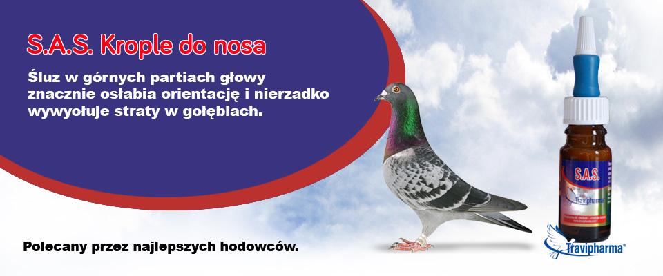Krople do nosa dla gołębi.